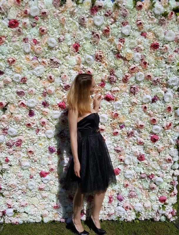 Peoniju ziedu siena 240x200